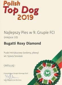Bugatti-PTD-2019-najlepszy-pies-w-9.-grupie-FCI-M10