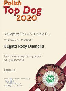Bugatti-PTD-2020-najlepszy-pies-w-9.-grupie-FCI-M17